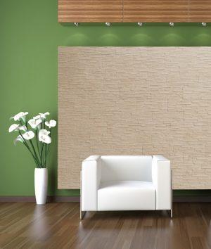 Siseseinte dekoratiivkivi - Coral Beige
