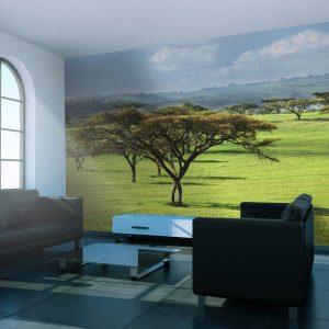 Fototapeet - African trees