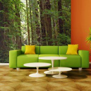 Fototapeet - Green forest