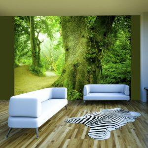 Fototapeet - Forest pathway